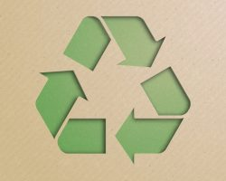 5 Best Practices for Environmentally Friendly Packaging